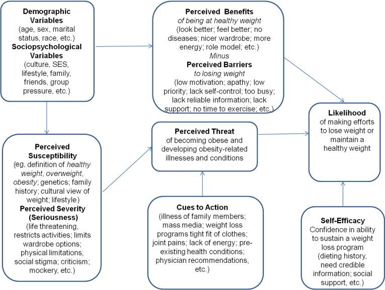 Health Belief Model Psych Mental Health Np